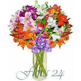 Фото на цветах кировоград